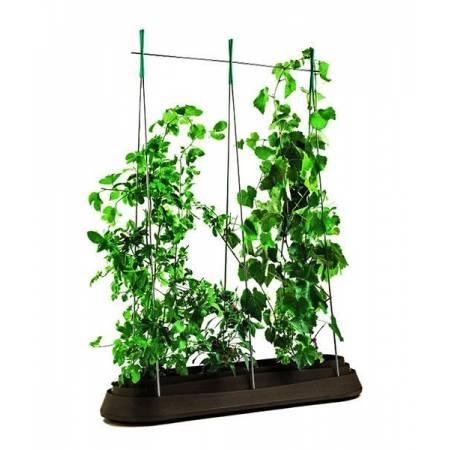 Грядка для рослин G-Row, коричнева