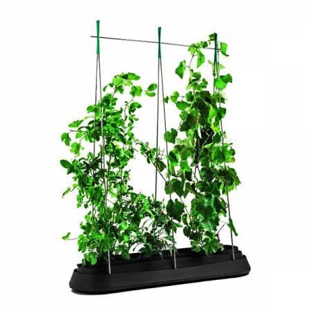 Грядка для рослин G-Row, сіра